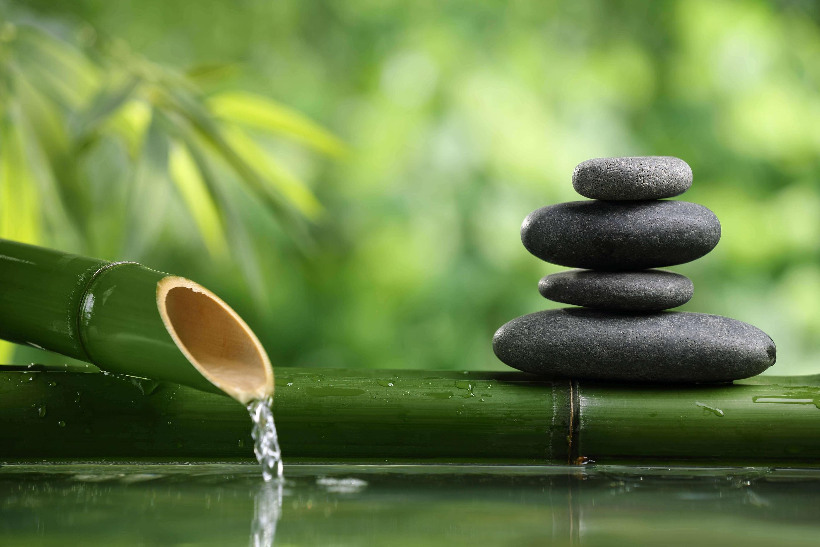 Zen bamboo roches
